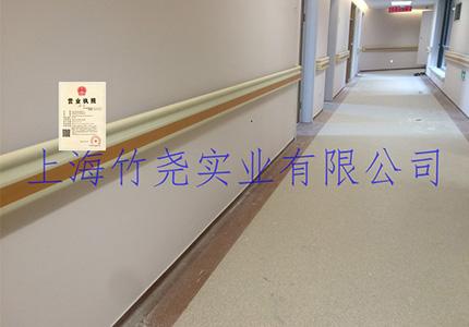ZY-8653 豪华防撞扶手